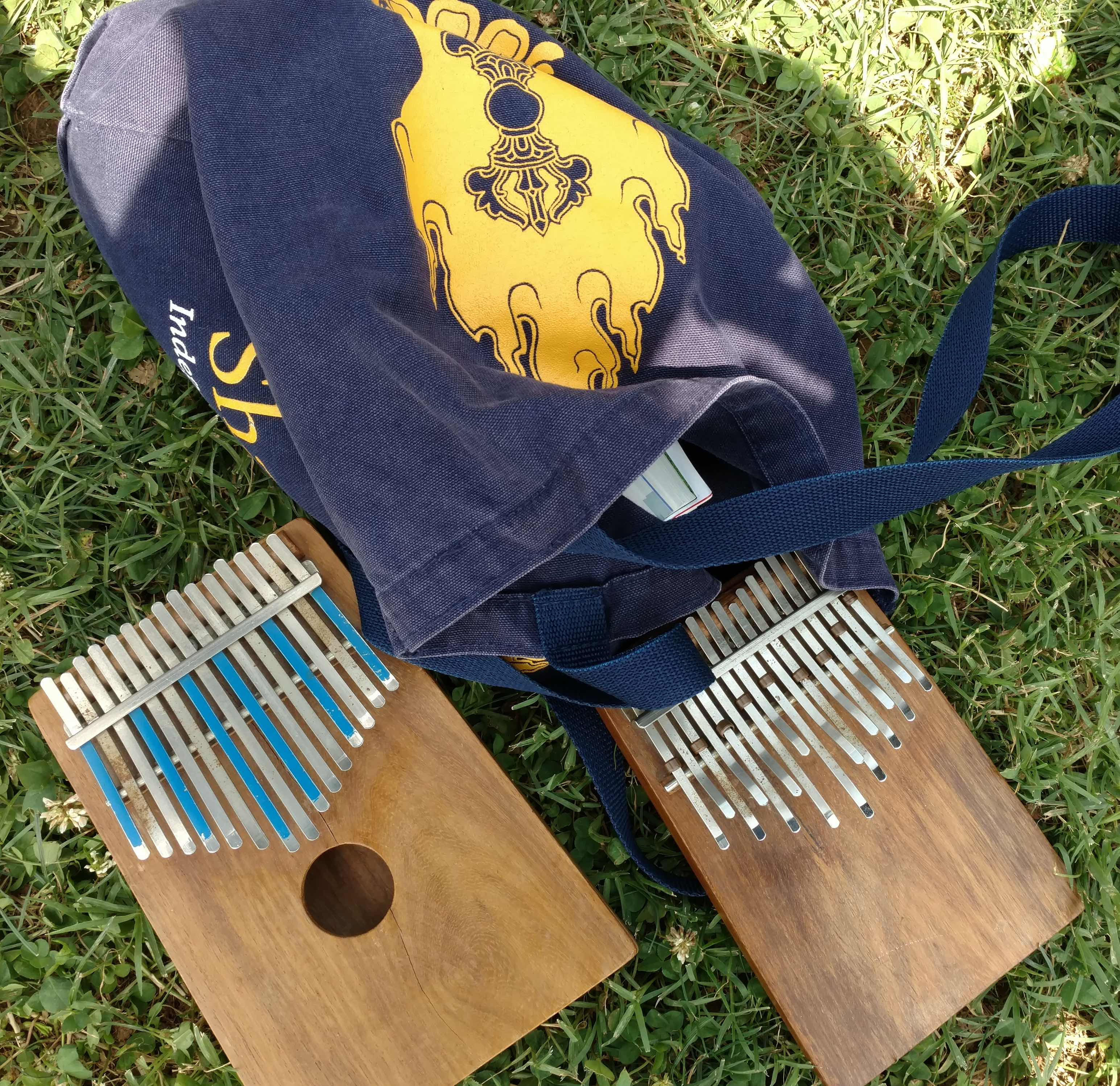 An alto kalimba and a treble kalimba (right) on the grass.